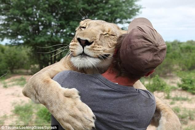 2. Kevin Richardson มนุษย์สิงโต