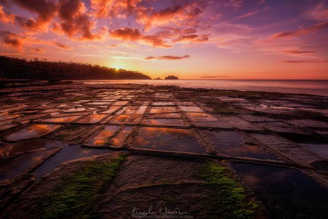 2. Tessellated Pavement บนเกาะแทสเมเนีย (รัฐหนึ่งในประเทศออสเตรเลีย)1