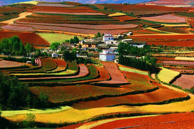 23. Red Land, Dongchuan, Yunnan