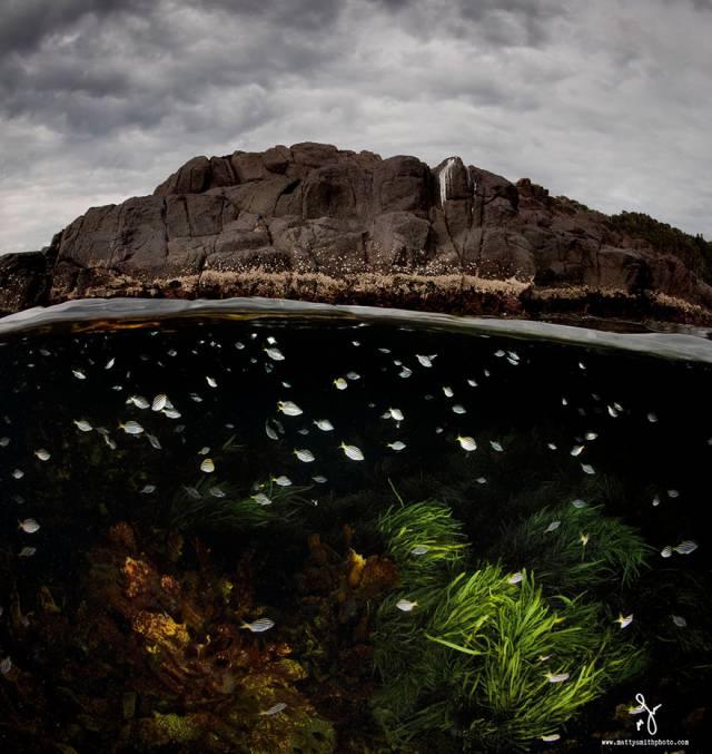 25 Underwater World