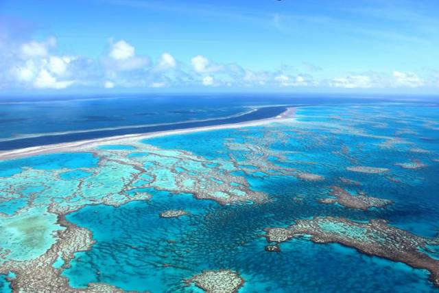 3. แนวปะการังเกรท แบริเออร์ รีฟ2