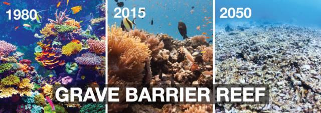 3. แนวปะการังเกรท แบริเออร์ รีฟ8
