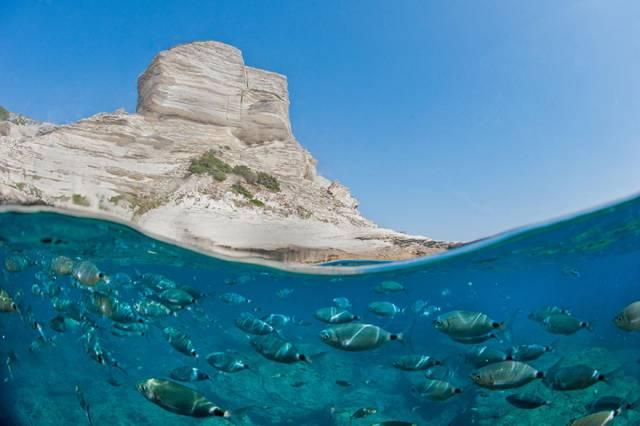 34 Underwater World
