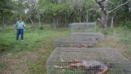 เรื่องจริงชวนหลอน-Body-Farm-ฟาร์มสยองที่มีแต่ศพนอนเกลื่อน-3