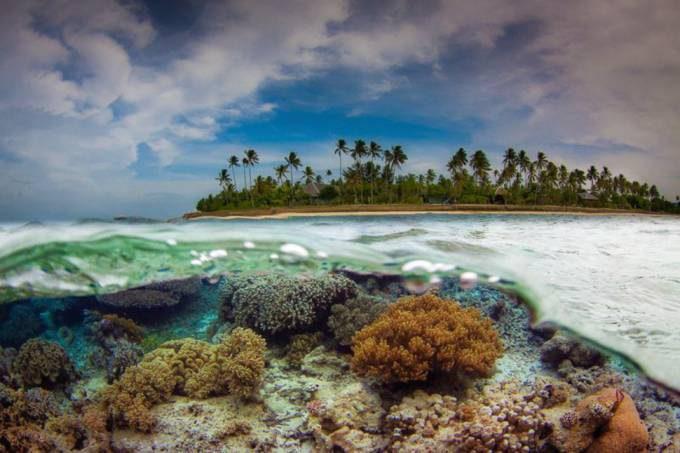 28. Flores Sea, Indonesia