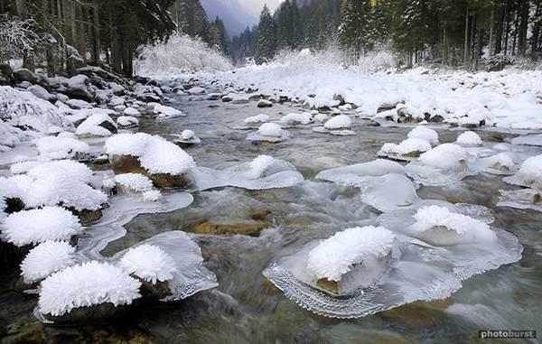 9. ปรากฏการณ์ ดอกไม้น้ำแข็ง ( Ice Flowers )3