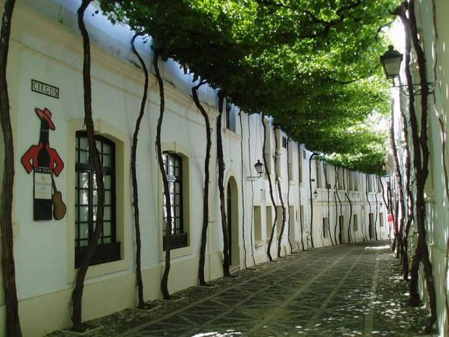 19. Street in Jerez, Spain