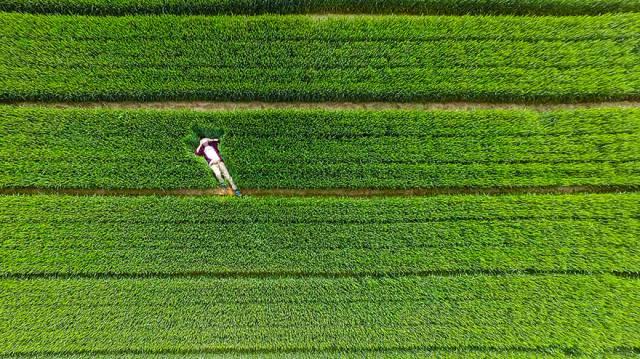 5. อ่างเก็บน้ำสีเว่ย, ซูเชง มณฑลซานตง ประเทศจีน