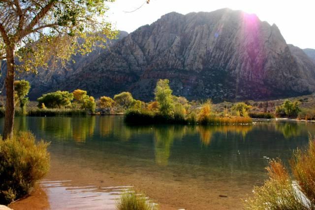 6. Timia oasis ประเทศไนเจอร์
