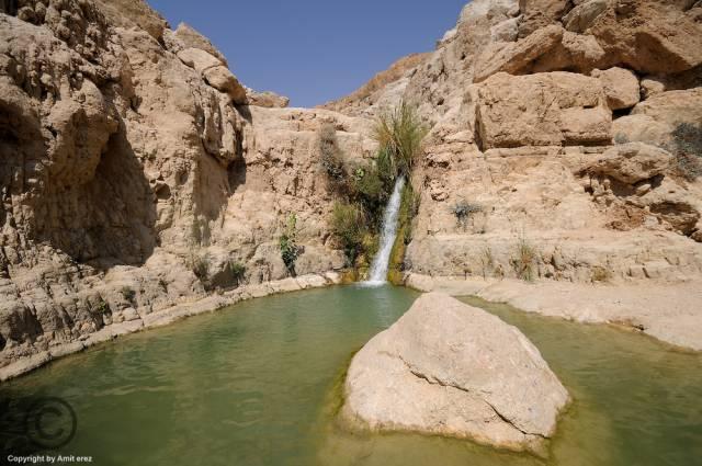 7. Oasis Ein Gedi ประเทศอิสราเอล 2