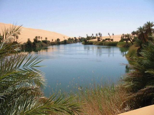 9. Liwa Oasis สหรัฐอาหรับเอมิเรตส์ 2