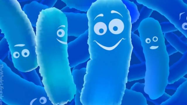 blog-probiotics