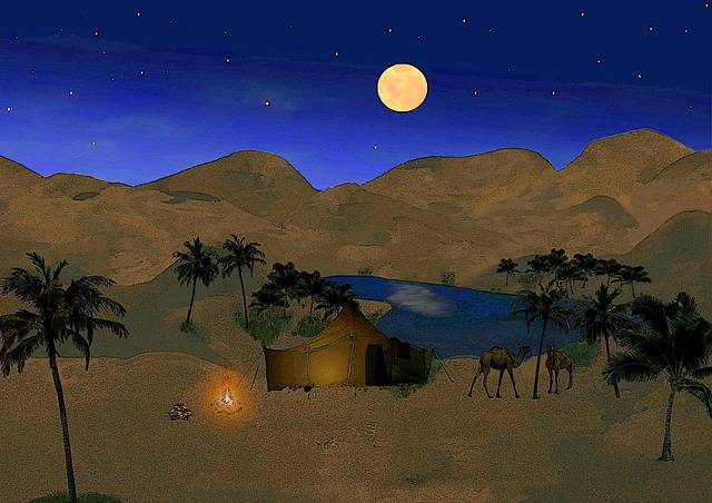 oasis-593389_640