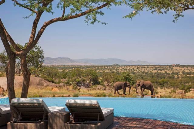 11.The Four Seasons Safari Lodge Serengeti in Tanzania 1