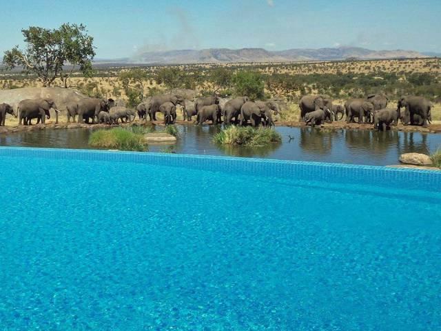 11.The Four Seasons Safari Lodge Serengeti in Tanzania