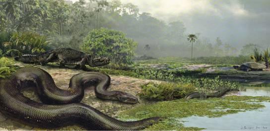 snake_1