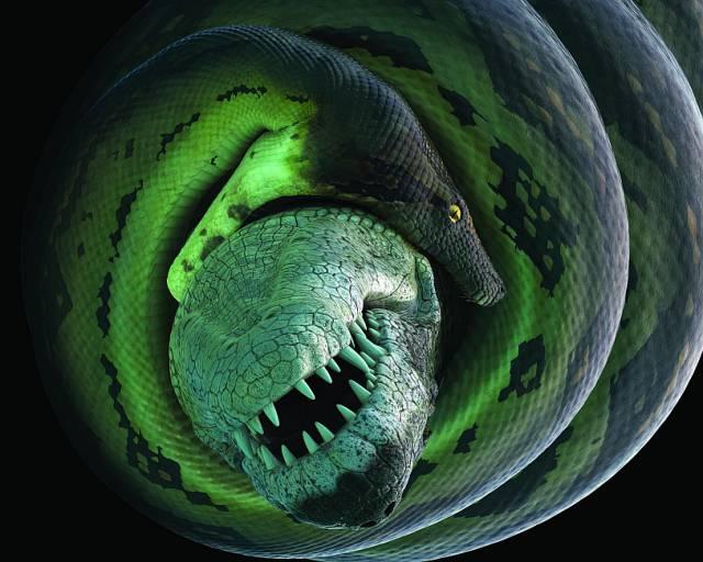 croc-battle